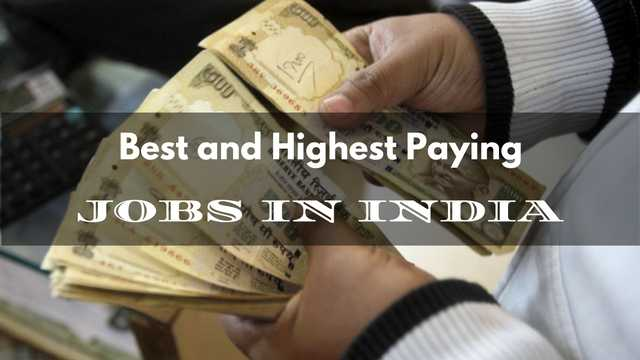 highest paying job in india