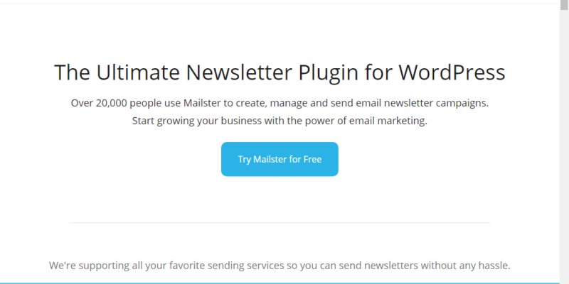 WordPress mailster review