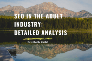 seo in the adult website